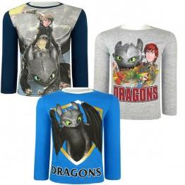 Блуза Dragons