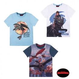 Тениски Драконите от Бърк